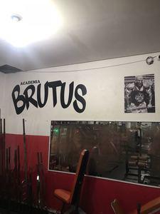 Academia Brutus -