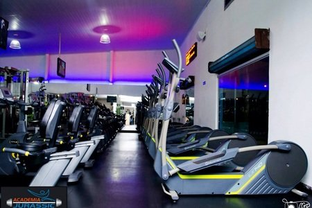Academia Jurassic Gym -