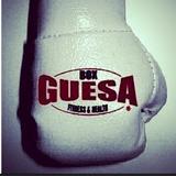 Box Guesa - logo