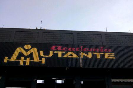 Academia Mutante