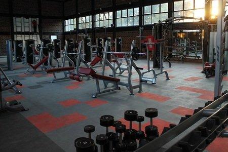 Sports Inc -