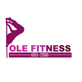 Pole Fitness Goyco Studio - logo