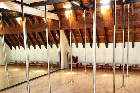 Pole Fitness Goyco Studio