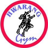Instituto Hwarang - logo