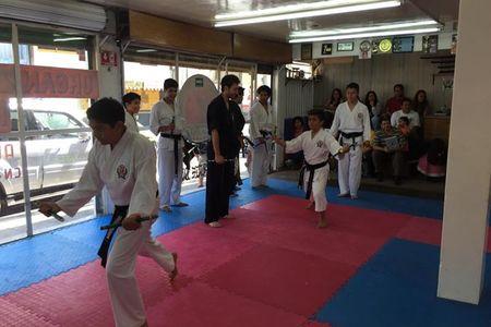 Yoshitaka International Karate Do