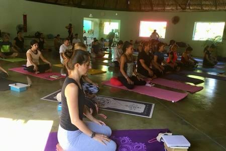 Yoga en Sintesis Mérida -