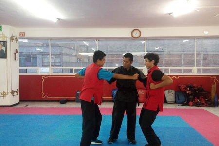 Colegio de Wushu y Medicina Tradicional China Ces - Wushu. -