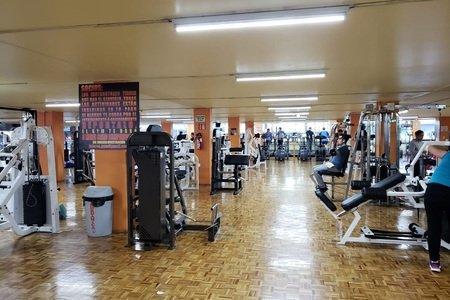 Loieros Gym Viaducto -