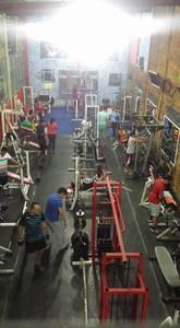 Thor Xtreme Gym
