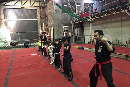 Speed Of Real Kenpo -