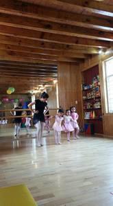 Pipilcalli centro de estimulacion temprana y ballet -