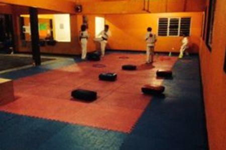 Minotauro's Gym