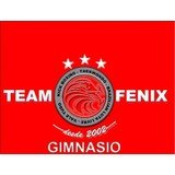Team Fenix Artes Marciales - logo