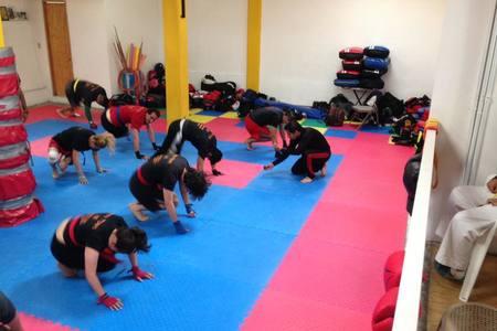 Zen Martial Arts Desierto de los Leones -