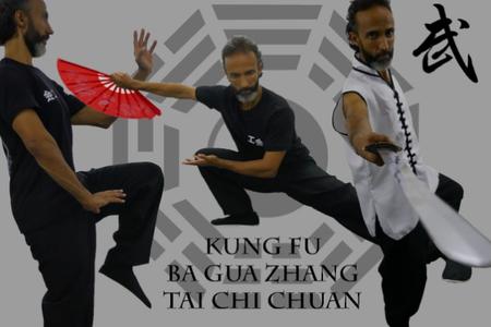Escola Bagua Kung Fu Brasil - Sp -