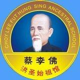 Escuela Kung Fu Choy Lee Fut Viña Del Mar - logo