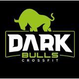 Dark Bulls - logo