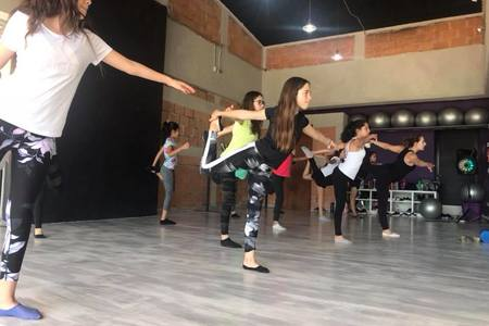 Danzistic studio