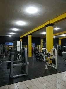 1% Muscle GYM