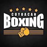 Coyoacan Boxing - logo