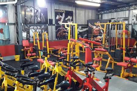 Team Fenix Artes Marciales -