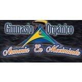 Gimnasio Orgánico Armonía Y Movimiento - logo