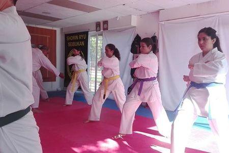 Karate Seibukan José Luis Galarce -
