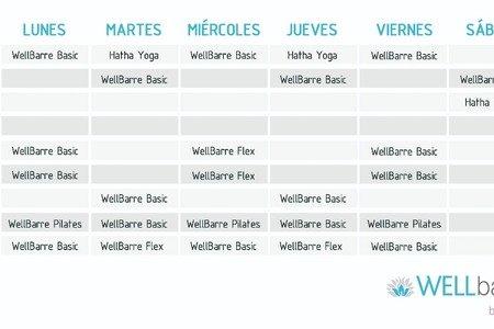 Wellbarre by Vita