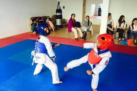 Fitness Taekwondo -