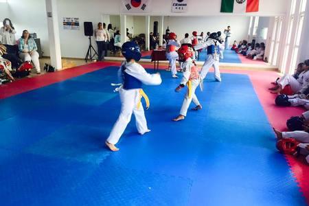 Fitness Taekwondo