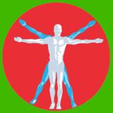 Duofit B.v. - logo