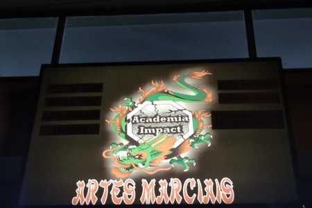 Academia Impact