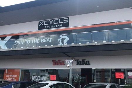 XCYCLE Milenio