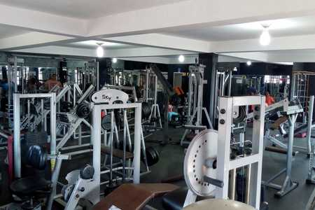 No Pain No Gain Fitness -