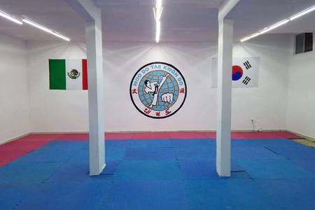 Moodo Taekwondo Huinalá