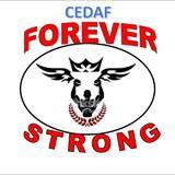 Forever Strong - logo