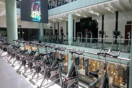 Zona Fitness ALTAVISTA -