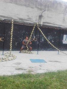 Wild Monkeys Crossfit -