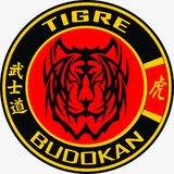 Academia Tigre Budokan - logo