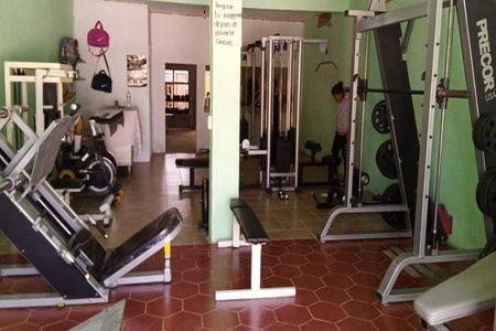 Bull Gym