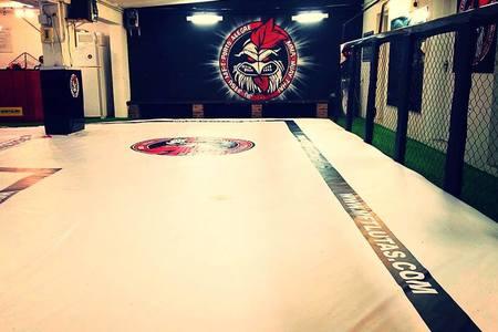 Minu Fight Team -