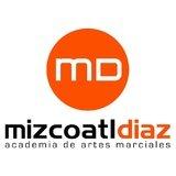 Academia De Artes Marciales Mizcoatl Diaz - logo