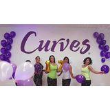 Curves Villa Del Parque - logo