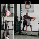 IB Treinamento Especializado - logo