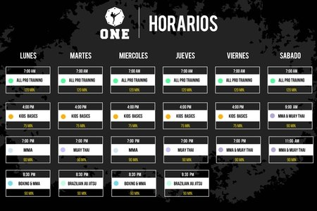 One MMA Mexico