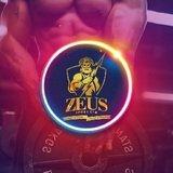 Zeus Sport Gym - logo