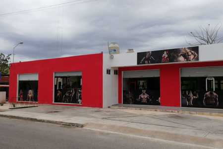 Zeus Sport Gym -