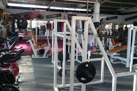 The Lions Gym