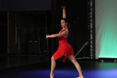 Dans Dansen -