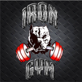 Iron Gym - logo